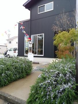 豊橋木の家花モデル.jpg
